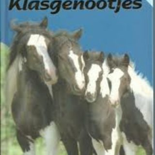 Paarden vriendenboekjes Blauw