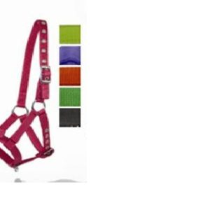 Veulenhalster  3 punten verstelbaar Rider Pro Roze